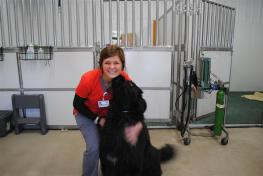 student with dog at animal hospital