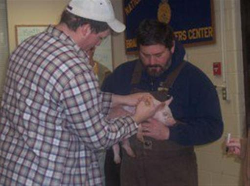 student and teacher holding a baby pig