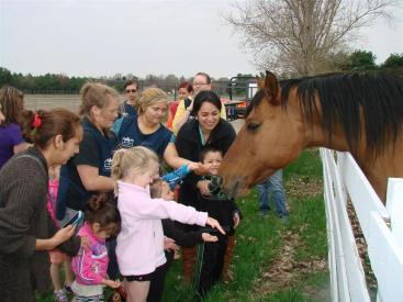 Student greeting Horse