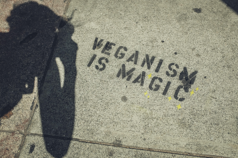 ropa vegana nueva tendencia