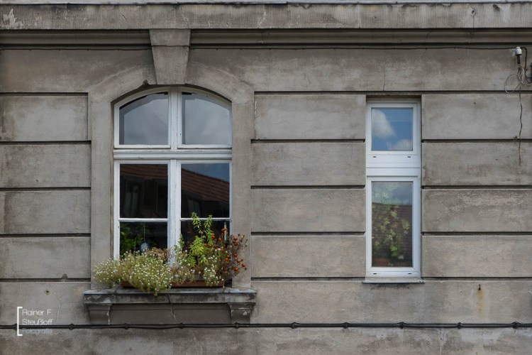 RainerSteussloff-0309