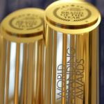 New World Branding Awards Trophies