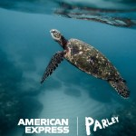 American Express & Parley Back_Our_Oceans_Turtle