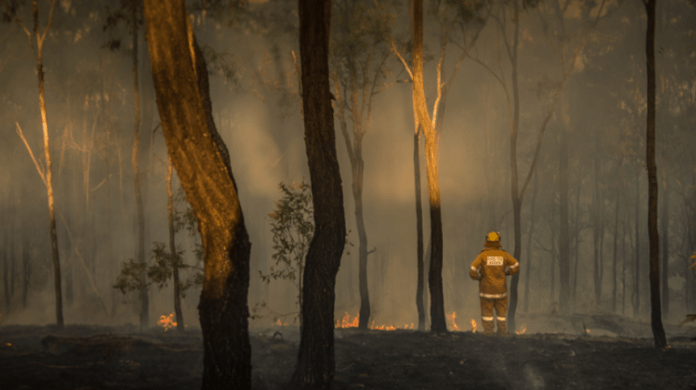 Coca-Cola Company announces its support in the wildfire relief efforts