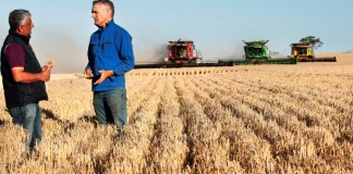 Asahi Beverages sources barley direct from Aussie farmers