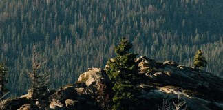 Ralph Lauren commits to achieving net-zero global GHG emissions