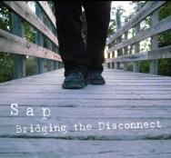 bridge-walk-cover