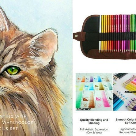 Watercolor Pencil Tutorial – Maine Cat Drawing | Amazrock Art & Craft