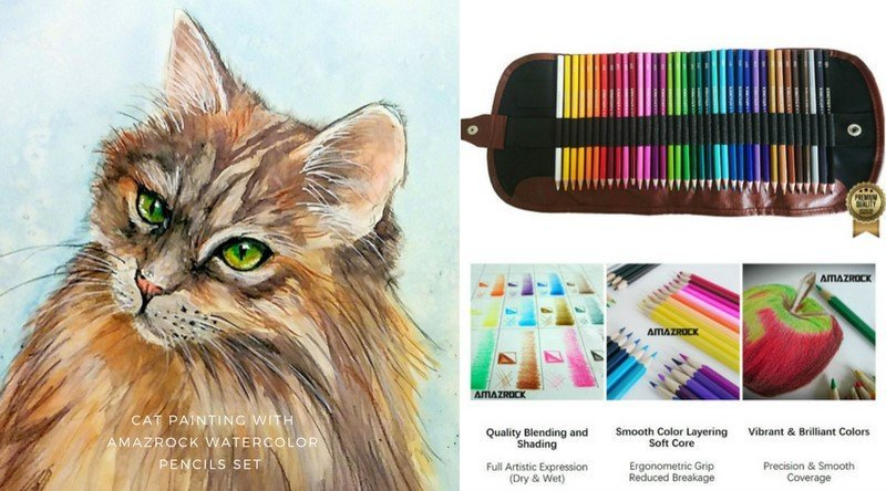 Maine Cat Watercolor Painting with Amazrock Water Soluble Colored Pencil Set