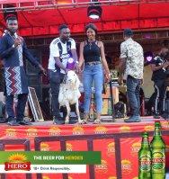 ofala festival brandspurng hero lager14