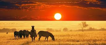 Travel Bucket List For 2020. African Countries To Visit - Brand Spur