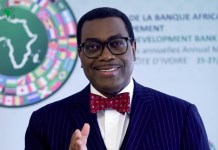 Akinwumi A Adesina, African Development Bank Group,