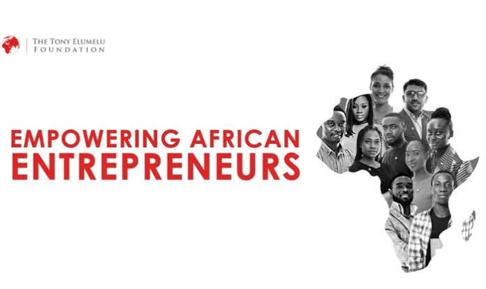 Tony Elumelu Foundation, African Entrepreneurship Programme