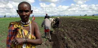 Tanzania - First Mile Project - March 2006
