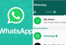 WhatsApp Download: Simple Steps To Download Media From WhatsApp Status-Brand Spur Nigeria