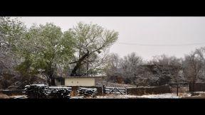nevada buenaventura marzo 8 - 8