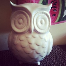 The new addition to our owl collection