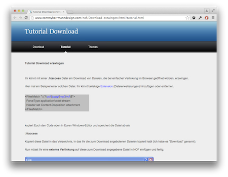 Screenshot Erzwungener Dateidownload im Browser