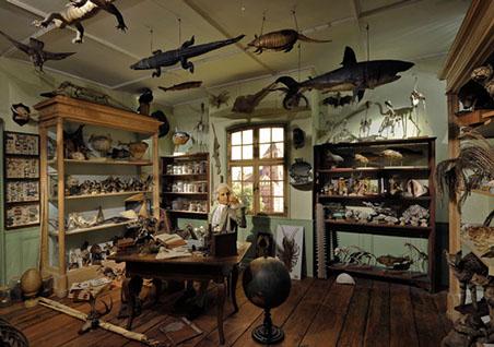 cabinets de curiosite