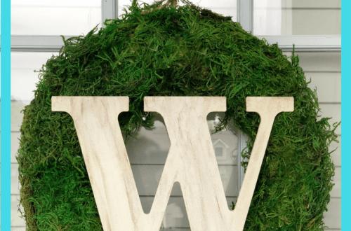 Easy DIY Moss Wreath - Easy DIY Moss Wreath
