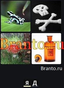 4 Фотки 1 Слово 2020 на русском: ответы на все уровни игры
