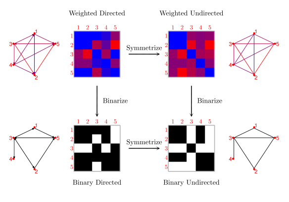 igure 4: Graphs can be classi- fied based on their edge weights (weighted/binary) and directionality (directed/undirected). It is possible to transform a directed graph into an undirected one by symmetrization (i.e. by removing the information about the edge directions), and a weighted graph into a binary one by thresholding (i.e. by assigning a value of 1 to the edges above a given threshold and 0 to those below the threshold).