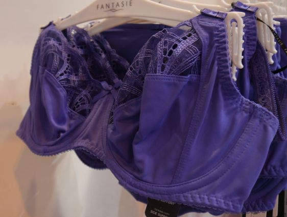 Fantasie Lingerie Alex Side Support Bra Violet