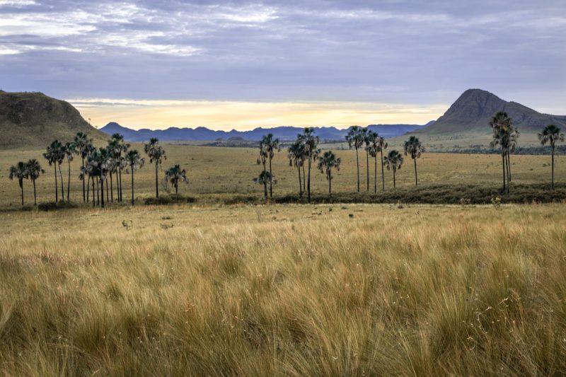 Brazil e Termos sobre Geografia em ingles com cambly