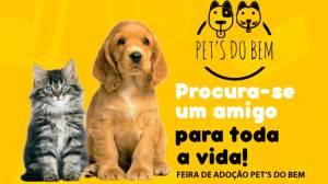 Procura-se um amigo! Feira de adoção responsável de Pet's movimenta shopping neste final de semana