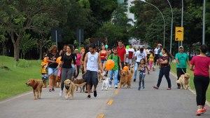 Pet Expo Brasília arrecada 12 toneladas em doações