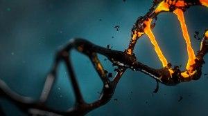 O efeito colateral do teste de DNA