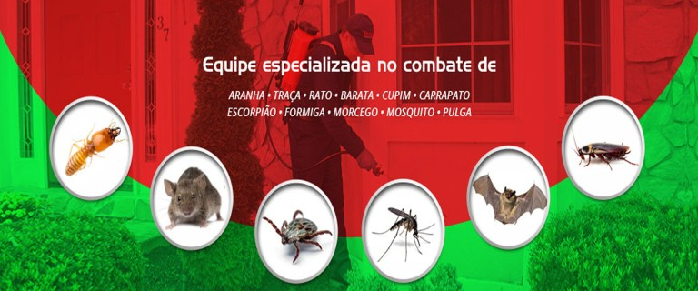 Dedetização e controle de pragas urbanas em Salvador