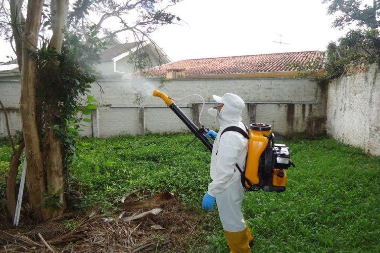 Dedetização e controle de pragas urbanas em Guarujá