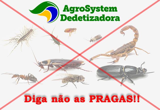 Controle de pragas emMarília