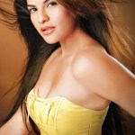 Jacqueline Fernandez Body Measurements