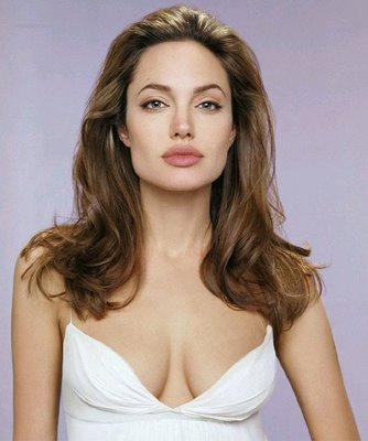 Did not Angelina jolie boob size opinion