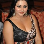 Namitha Body Measurements