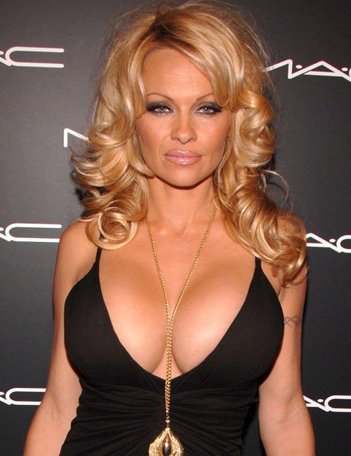 Pamela Anderson Bra Size