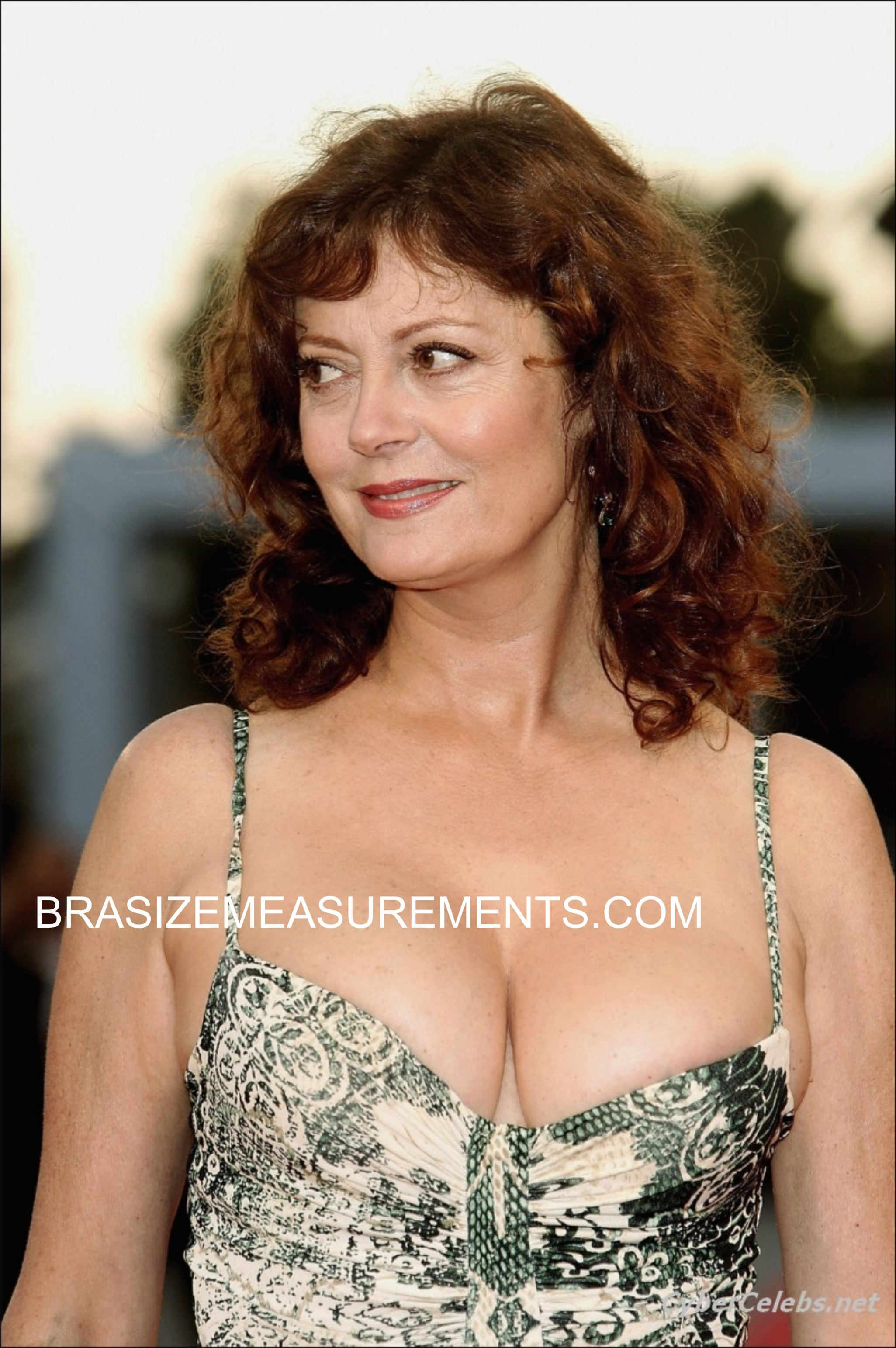 Susan Sarandon Bra Size