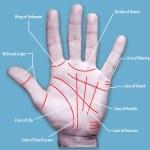 Unique Palm Lines Plastic Surgery Procedure