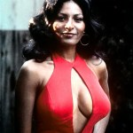Pam Grier Bra Size And Measurements