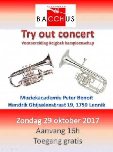 affiche try out 2017 jpg