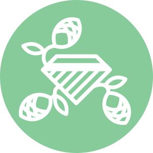 logo V6 blanc - fond vert ROND - seul