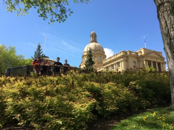 Lenora and her boys behind the legislature among the beautiful foliage.