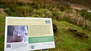 Hiweistafel am Nerz-Moor im Otter-Zentrum. Foto: Beate Ziehres