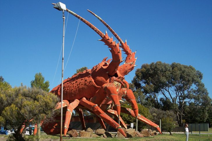 1920px-Kingston_SE_lobster