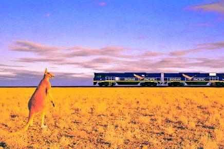 10 passeios de trem imperdíveis para fazer na Austrália | BRaustralia.com