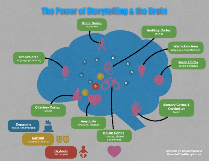 story brain.jpg