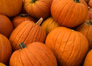 Take Care of Your Skin This Fall With…Pumpkin (and Eucerin)