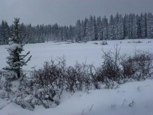 Grand Mesa Nordic Debut 2011-2012